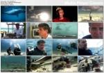 25 x szczêki / Best Bites: 25 Greatest Shark Moments (2009) PL.TVRip.XviD / Lektor PL