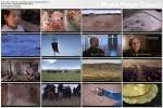 Imperium mongolskie / Empire of the Mongols (2005) PL.TVRip.XviD / Lektor PL